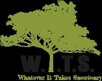 W.I.T.S._Logo_FullColorNoBg